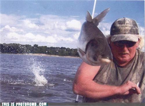 animals fish fishing lol photobomb puns seize the day