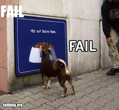 ads animals dogs failboat food perception pets signs - 4249548288