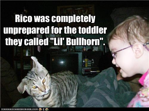 bullhorn caption captioned cat do not want pain shock surprise toddler unprepared yelling - 4250490368