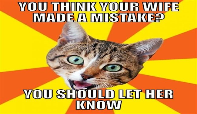 a funny list of bad advice given by a cat