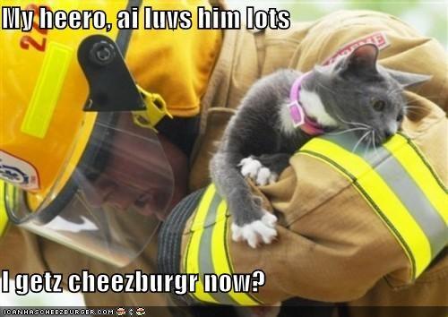Cheezburger Image 4251592448