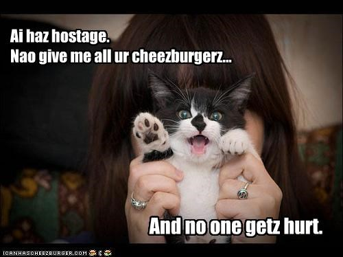 Cheezburger Image 4252571392