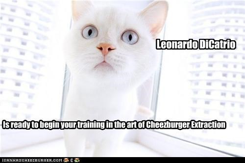 Is ready to begin your training in the art of Cheezburger Extraction Leonardo DiCatrio