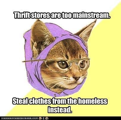 Hipster Kitty homeless thrift store