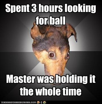 ball Depression Dog master