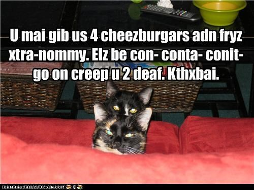 Cheezburger Image 4255027456
