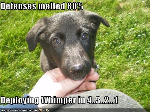 1 2 3 4 80 percent countdown defenses deploying melted puppy whatbreed whimper - 4255030016