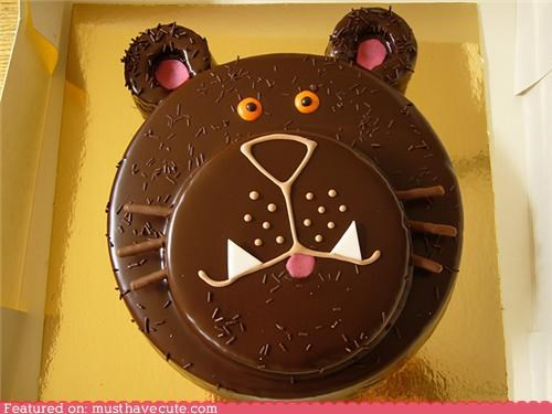 bear,cake,chocolate,epicute,face,ganache