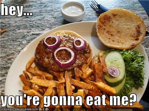 Cheezburger Image 4255844608