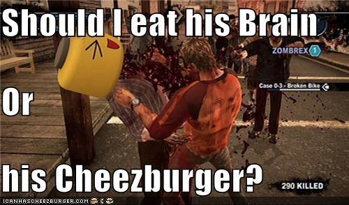 Cheezburger Image 4255942912