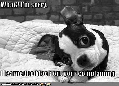 What? I'm sorry. I learned to block out your complaining.