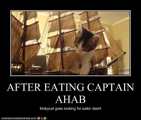 AFTER EATING CAPTAIN AHAB Mobycat goes looking for sailor desirt