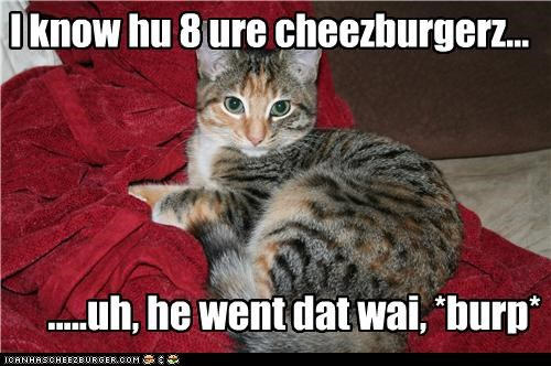 Cheezburger Image 4257473792