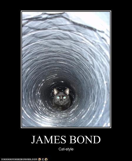 JAMES BOND Cat-style