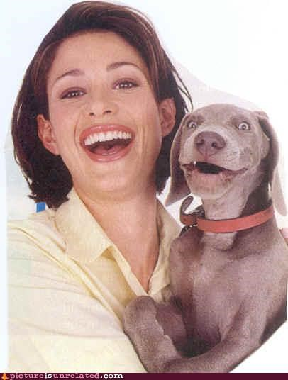 animals awesome creepy dogs glamour shots mans-best-friend smiles wtf - 4258368256