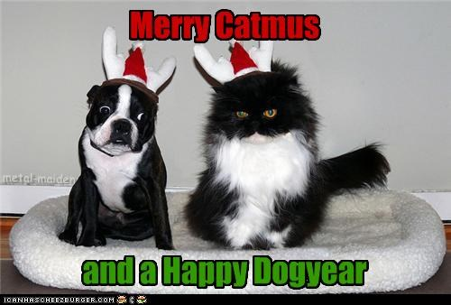 Merry Catmus and a Happy Dogyear metal-maiden