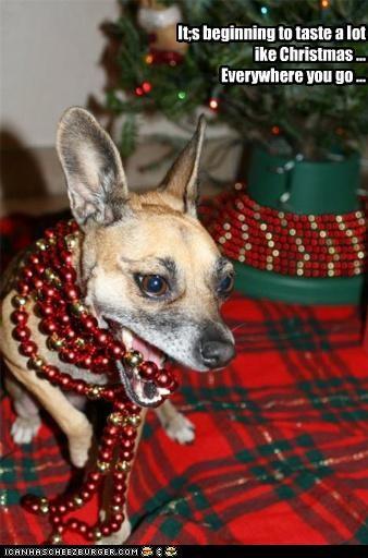 bead garland chihuahua christmas garland - 4258523392