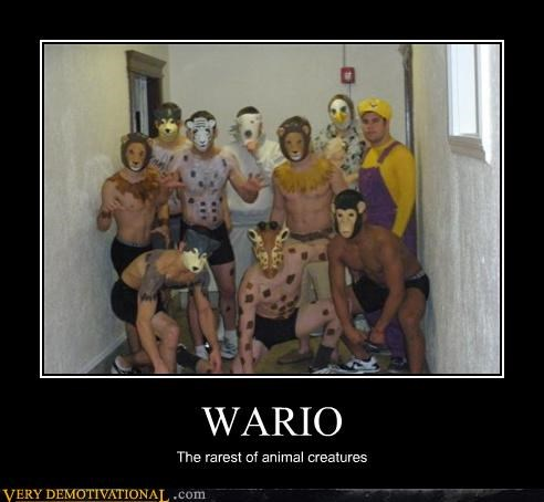 costume furries IRL wario wtf - 4258764800