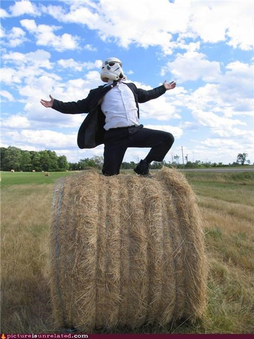 farm,hay,star wars,stormtrooper,wtf