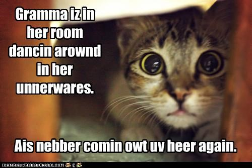 afraid caption captioned cat dancing grandma hiding room trauma traumatic traumatizing underwear wide eyed