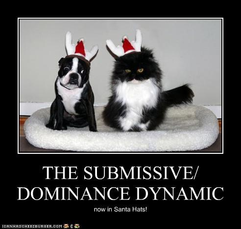 THE SUBMISSIVE/ DOMINANCE DYNAMIC now in Santa Hats!