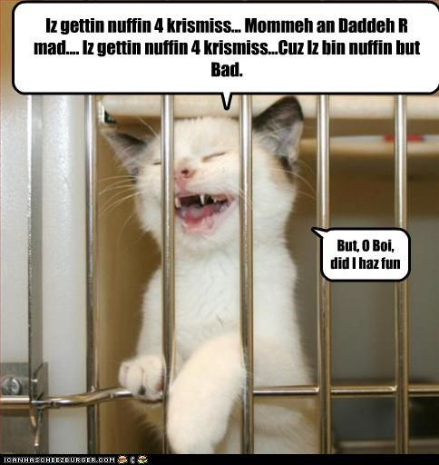cage,caption,captioned,cat,christmas,kitten,meowy christmas,merry christmas,no regrets,none,nothing,presents