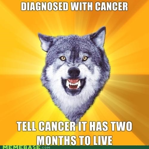 animemes,cancer,Courage Wolf,diagnosis,ultimatum
