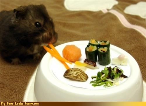 cute,fruits-veggies,hamster,hamster sushi,pets,sushi,vegetables