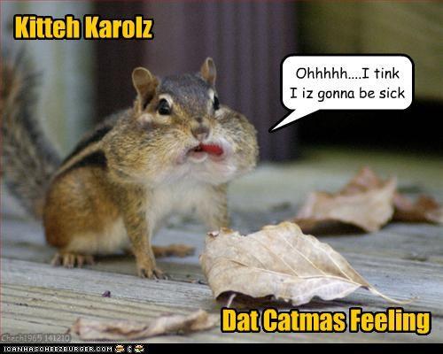 Kitteh Karolz Dat Catmas Feeling Ohhhhh....I tink I iz gonna be sick Chech1965 141210