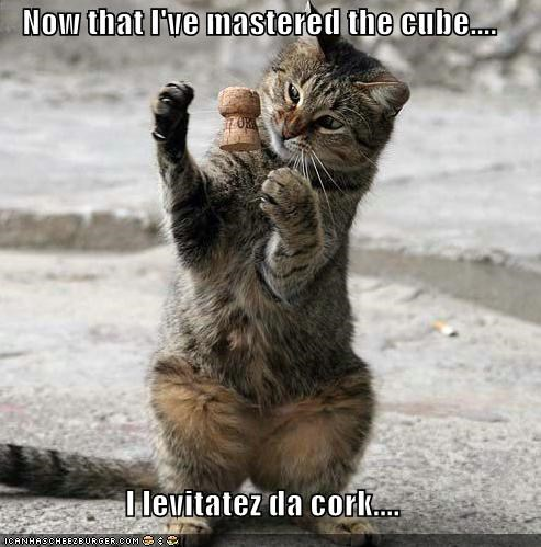 caption captioned cat cork cube levitate levitating levitation mastered mastery psychic telekinesis