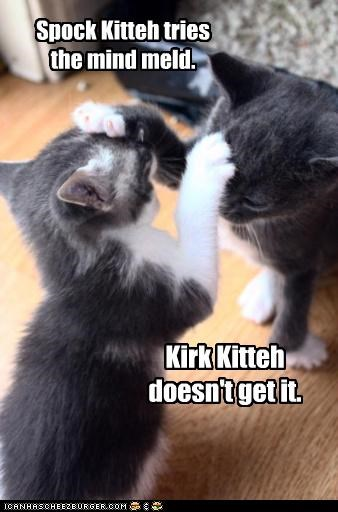 captain caption captioned cat Cats dont get it Hall of Fame kirk mind meld paws Spock Star Trek Vulcan - 4264508416