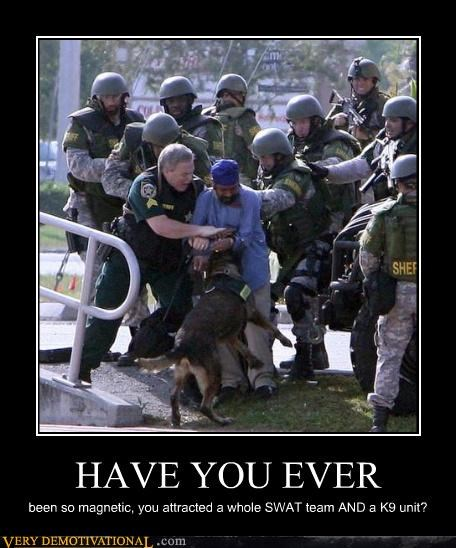 dogs,have you ever been,nerds,OverKill 9000,police,swat,wtf