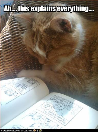 book caption captioned cat comic enlightenment everything explains explanation garfield reading solution - 4265751296