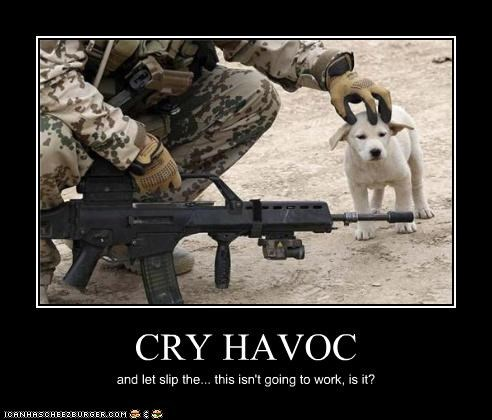 animal demotivational dogs funny lolz military pet - 4265971712