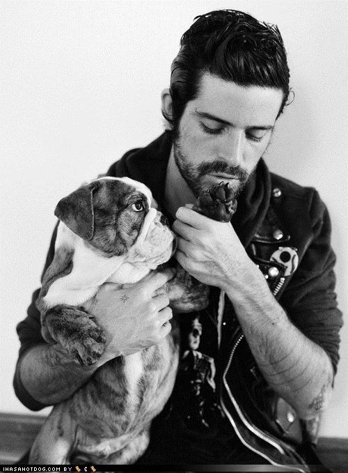 bulldog comparison contest devendra banhart fuzzier fuzzy Staring themed goggie week