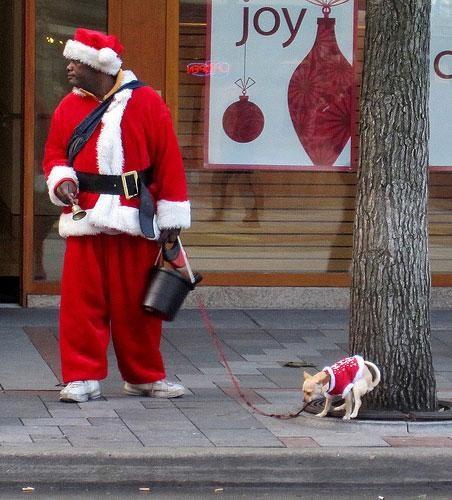 black santa,coal,dogs,funny