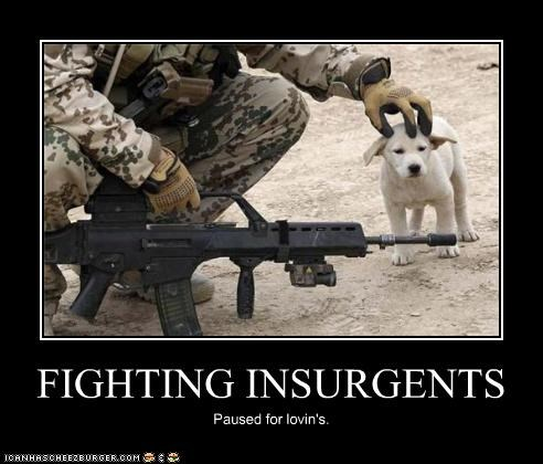 FIGHTING INSURGENTS Paused for lovin's.