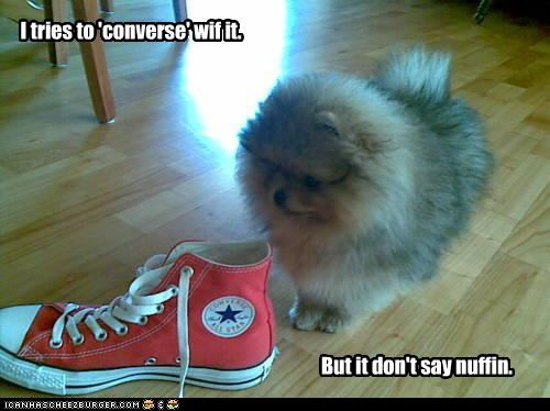 I tries to 'converse' wif it. But it don't say nuffin.