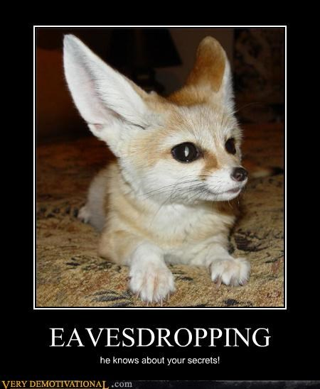 animals cute eavesdropping fox