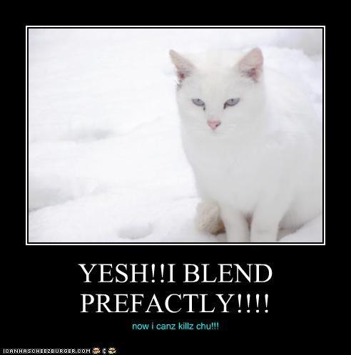 YESH!!I BLEND PREFACTLY!!!! now i canz killz chu!!!