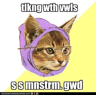 Hipster Kitty hpstr ktt t mnstrm vwls whtvr zmg - 4272155392
