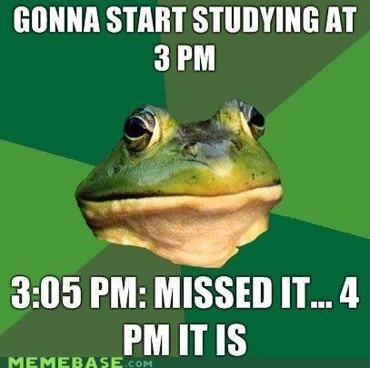 animemes,foul bachelor frog,homework,procrastination