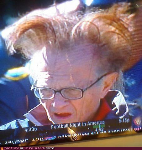 bird hair,celeb,Larry King,really wtf,wtf