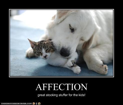 AFFECTION great stocking stuffer for the kids!