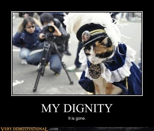 cat costume dignity modern living Sad sad but true - 4273865216