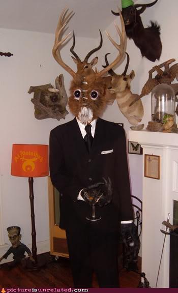 animals costume disturbing wtf - 4274326784