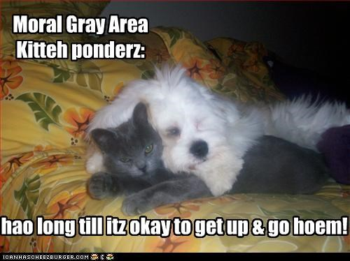 Moral Gray Area Kitteh ponderz: hao long till itz okay to get up & go hoem!