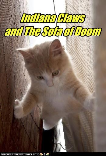 action adventure caption captioned cat doom Indiana Jones kitten Movie sofa tabby title - 4275276800