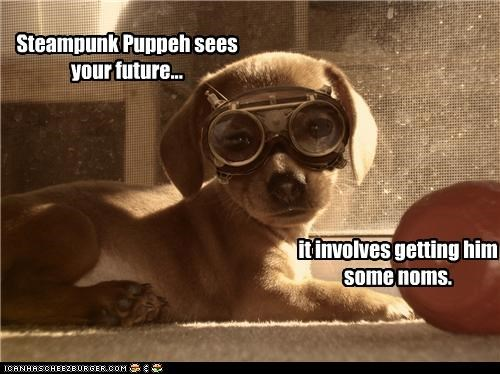 future goggles Hall of Fame labrador noms prediction puppy Steampunk - 4276422656