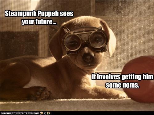 future goggles Hall of Fame labrador noms prediction puppy - 4276422656